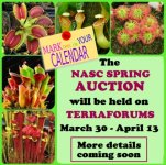 Spring Auction 2019.jpg